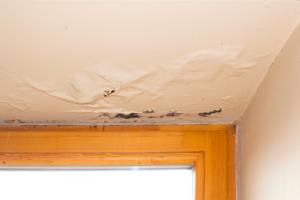 fuite toiture plafond mulhouse haut rhin 68