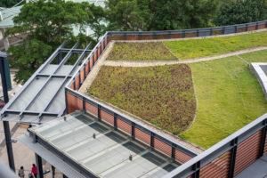 haut rhin alsace 68 toiture vegetalisee haut rhin
